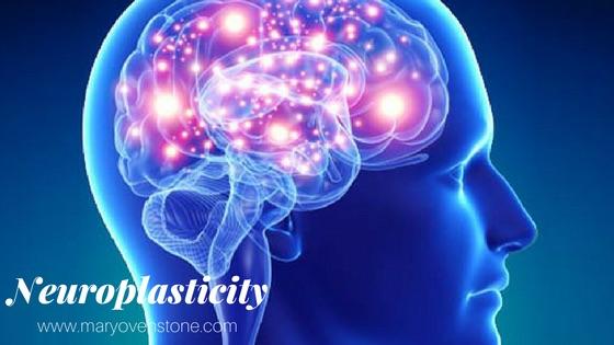 Neuroplasticity Mary Ovenstone