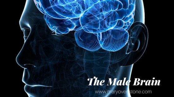 The Male Brain Mary Ovenstone